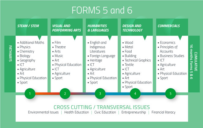 Forms 5 & 6